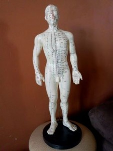 mannequin acupuncture
